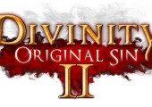 Divinity: Original Sin II Announced JDSKFJDS:KFJDS:L