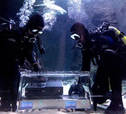 xbox one sharks